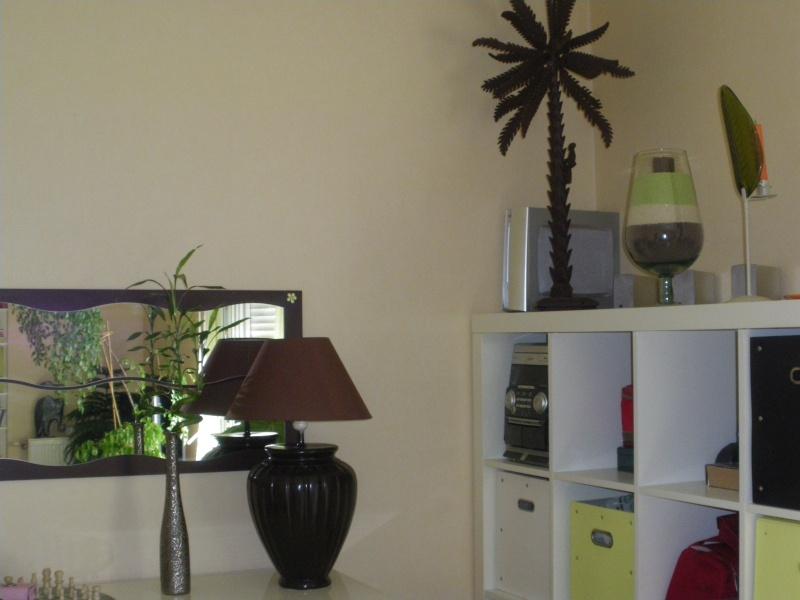Comment consolider un panneau de bois avec miroirs  trop souple ? Imgp0015
