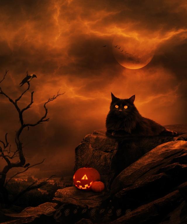 Avatars Halloween C0548b16