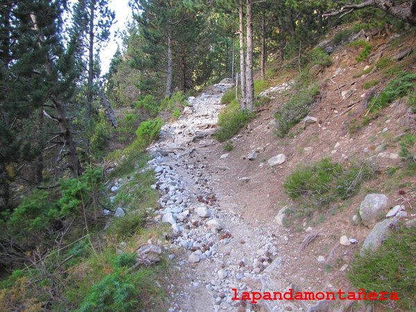 20120809 - PIRINEOS - GARMO NEGRO (3.051 m) A0213