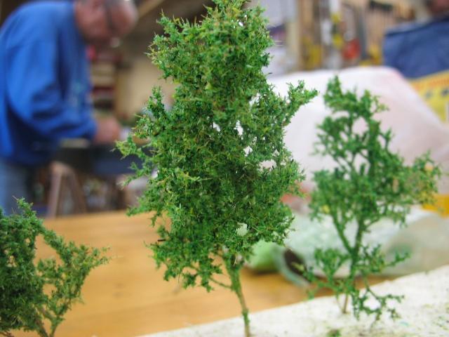 des petits arbres bien sympa Journa19