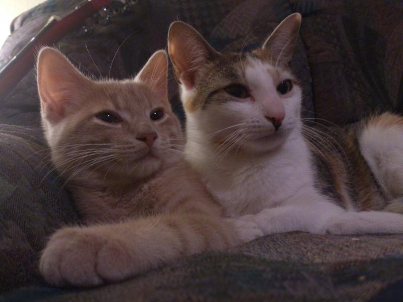 Dexter et Miss NoName :D Dsc_1110