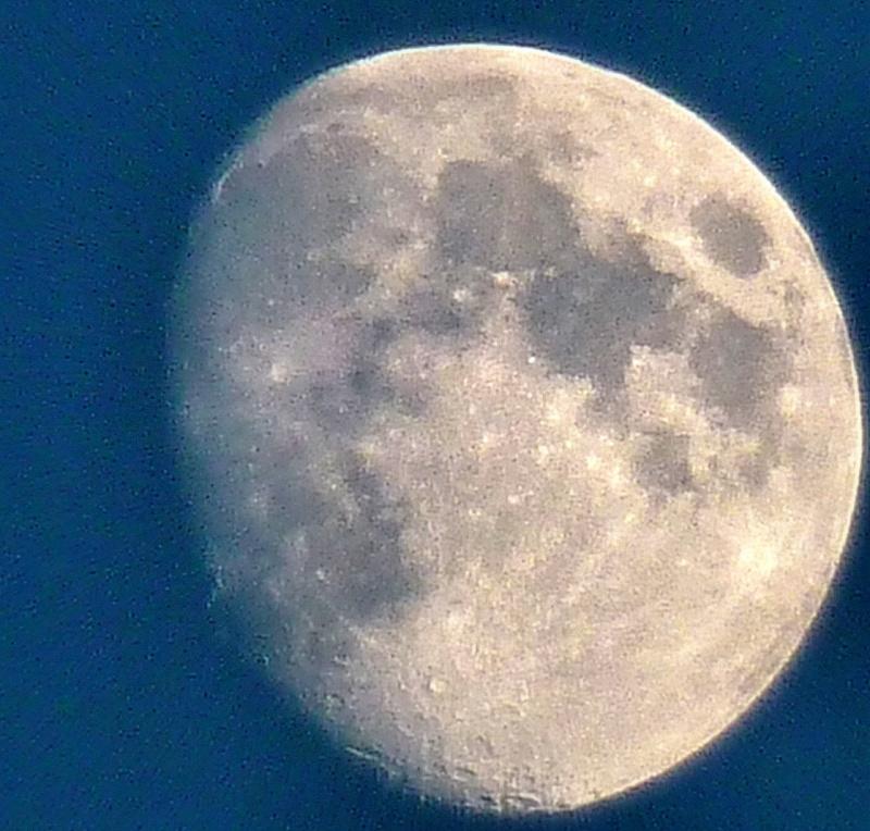 Ma première lune,FZ38 P1130710