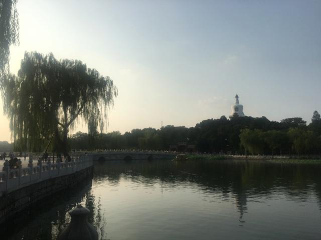 TR Shanghai août 2019 + 3 semaines en Chine Img_1511