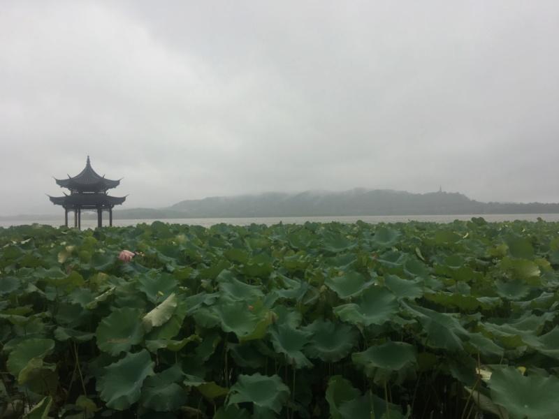 TR Shanghai août 2019 + 3 semaines en Chine Img_1910