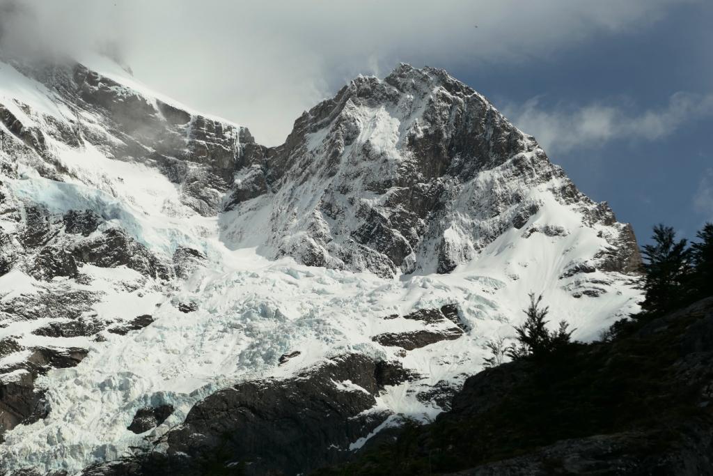 Flore, faune et paysages de Patagonie australe 0312