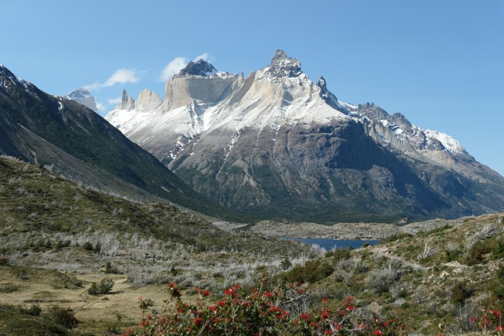 Flore, faune et paysages de Patagonie australe 0412
