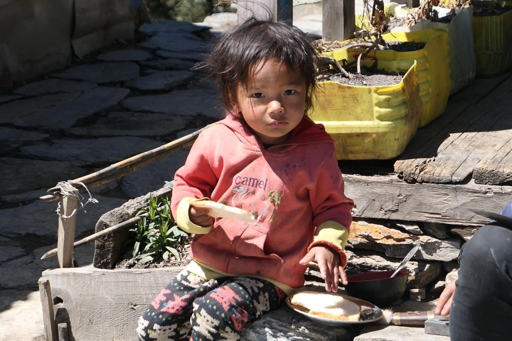 Népal - Mars avril 2019 - Page 3 07711