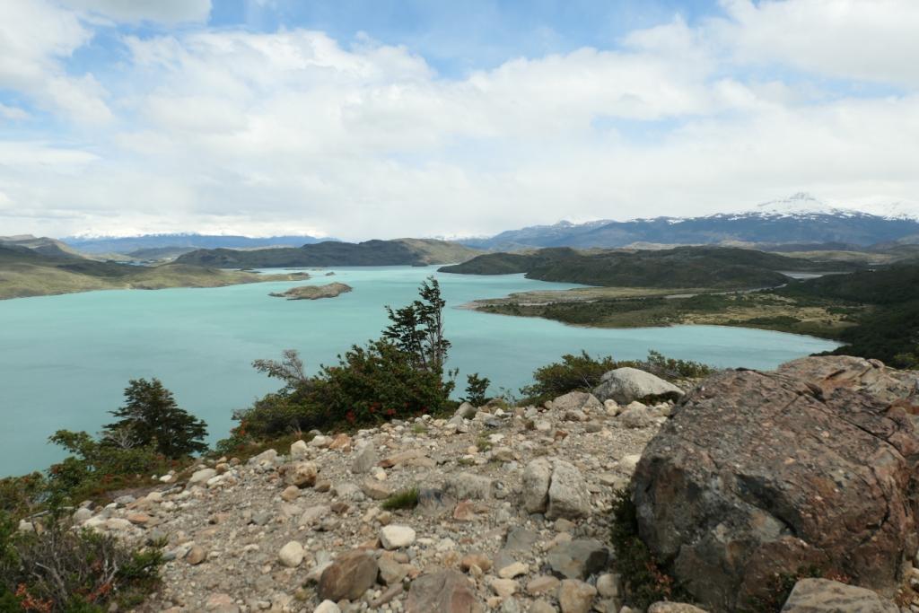 Flore, faune et paysages de Patagonie australe 3610