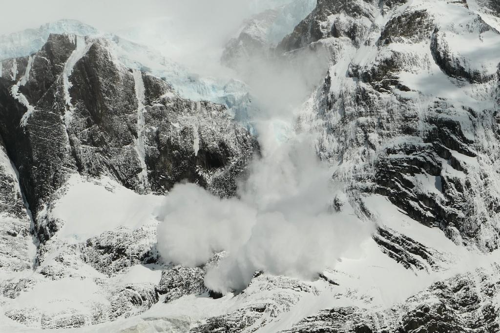 Flore, faune et paysages de Patagonie australe 3811