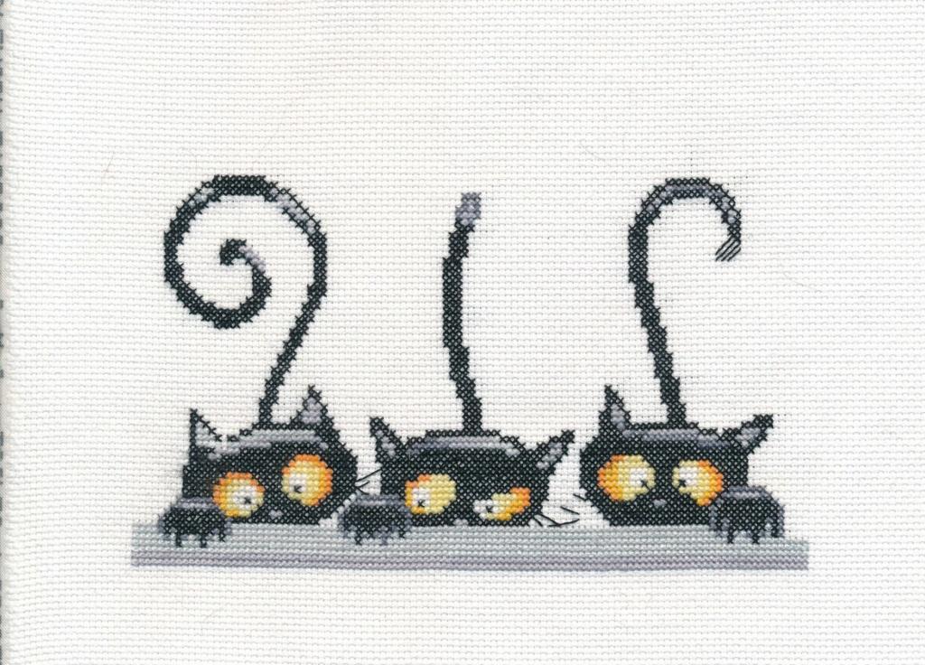 les 3 chats ou les curieux :boites faites 3_chat11