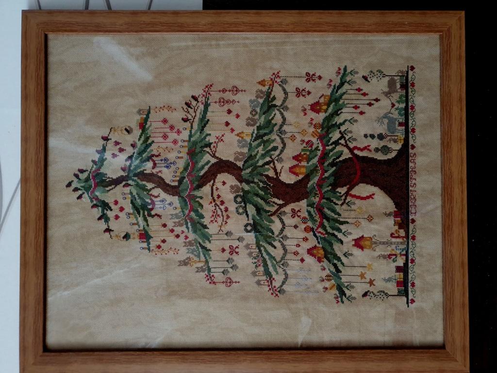 décoration Noël du forum Arbre_12