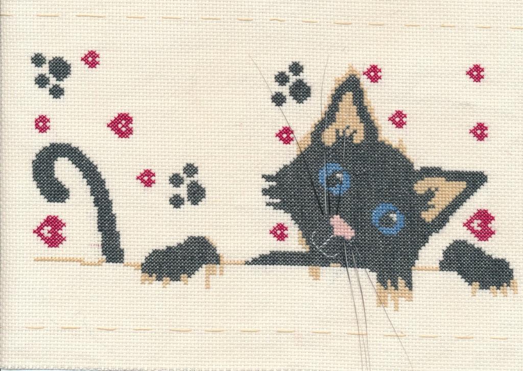 Nouvelle broderie un chat, non 2 Chat_q12