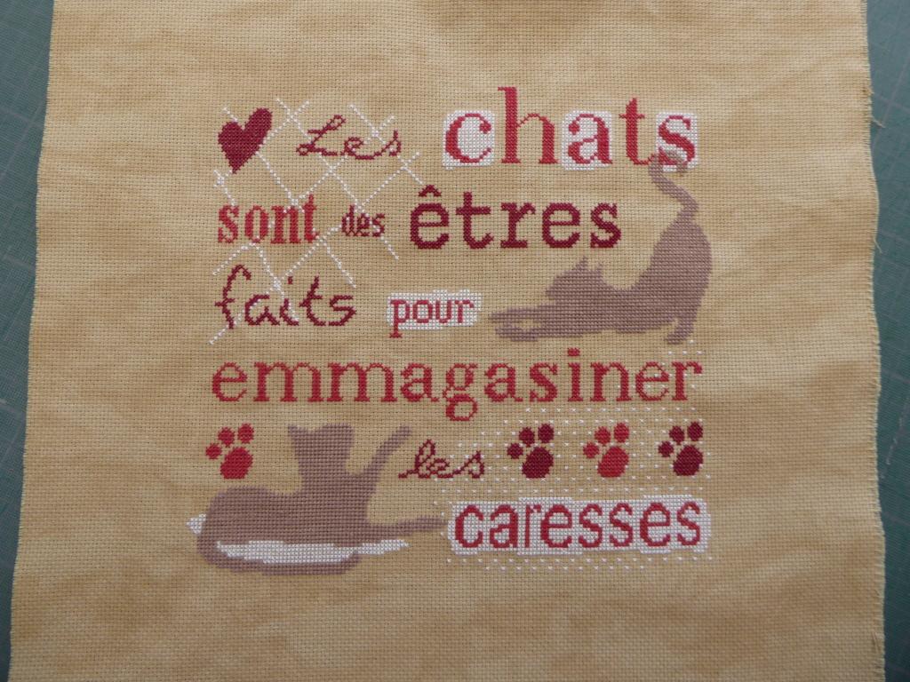 "Broderie "" Les chats sont.... P1020927"