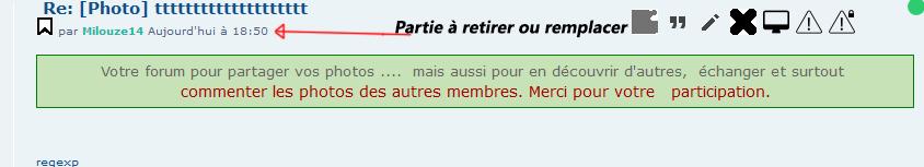 *RESOLU*[PHPBB3] Retirer l'auteur dans un message particulier 111210