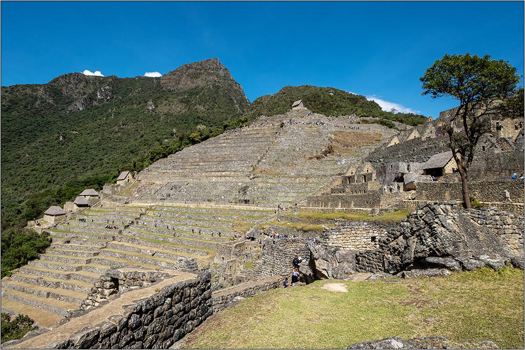 [Paysages] Le Machu Picchu Dscf4647