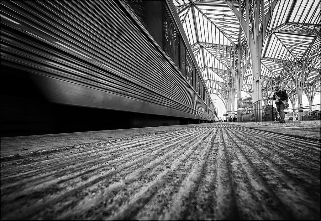 [Noir_et_Blanc] Gare au gorille Dscf7042