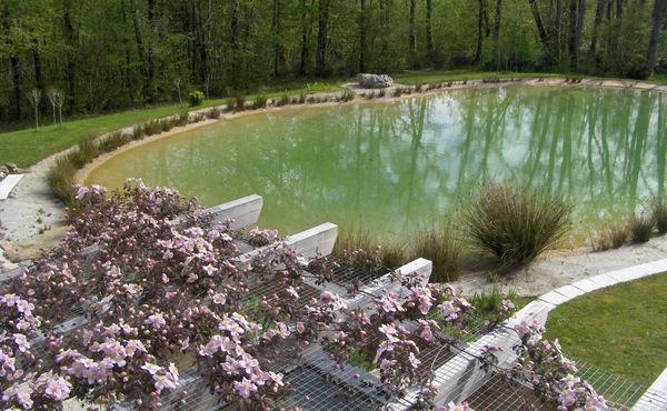 bassin en argile 600x3710