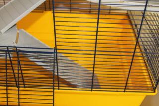 Cage Freddy 2 de SAVIC  [VENDUE] Fred310