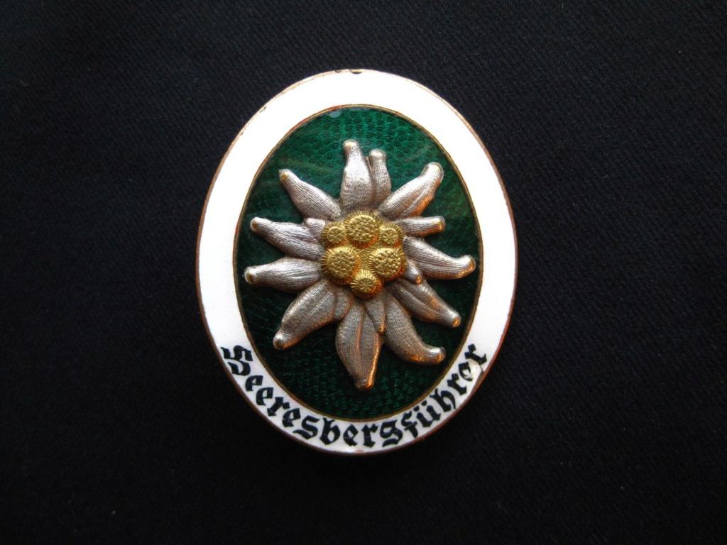 Ma vitrine Gebirgsjäger MàJ ajout NordfrontKreuz  Heeres10