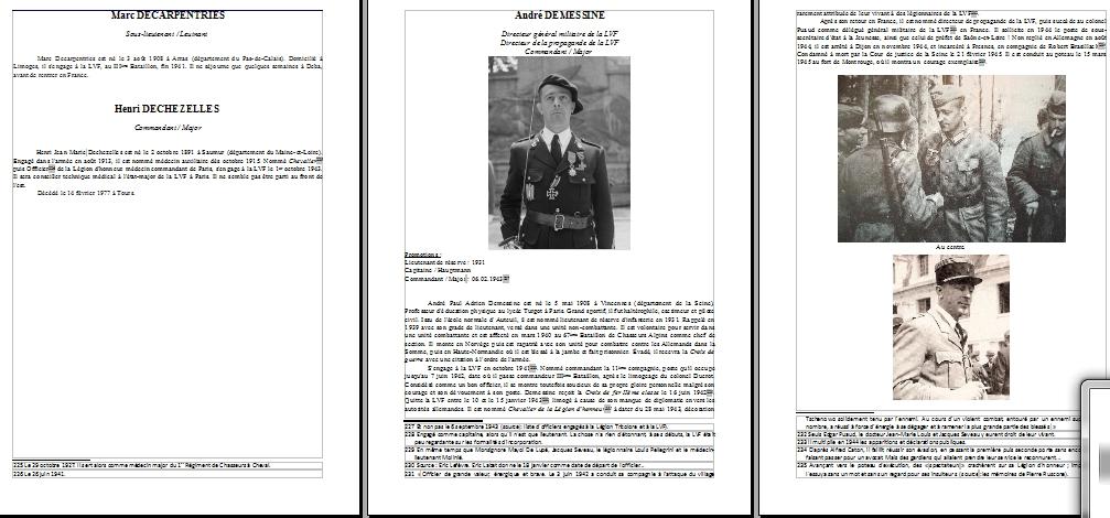 Encyclopédie de l'Ordre Nouveau - Français sous l'uniforme allemand Partie III : LVF 810