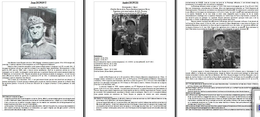 Encyclopédie de l'Ordre Nouveau - Français sous l'uniforme allemand Partie III : LVF 910