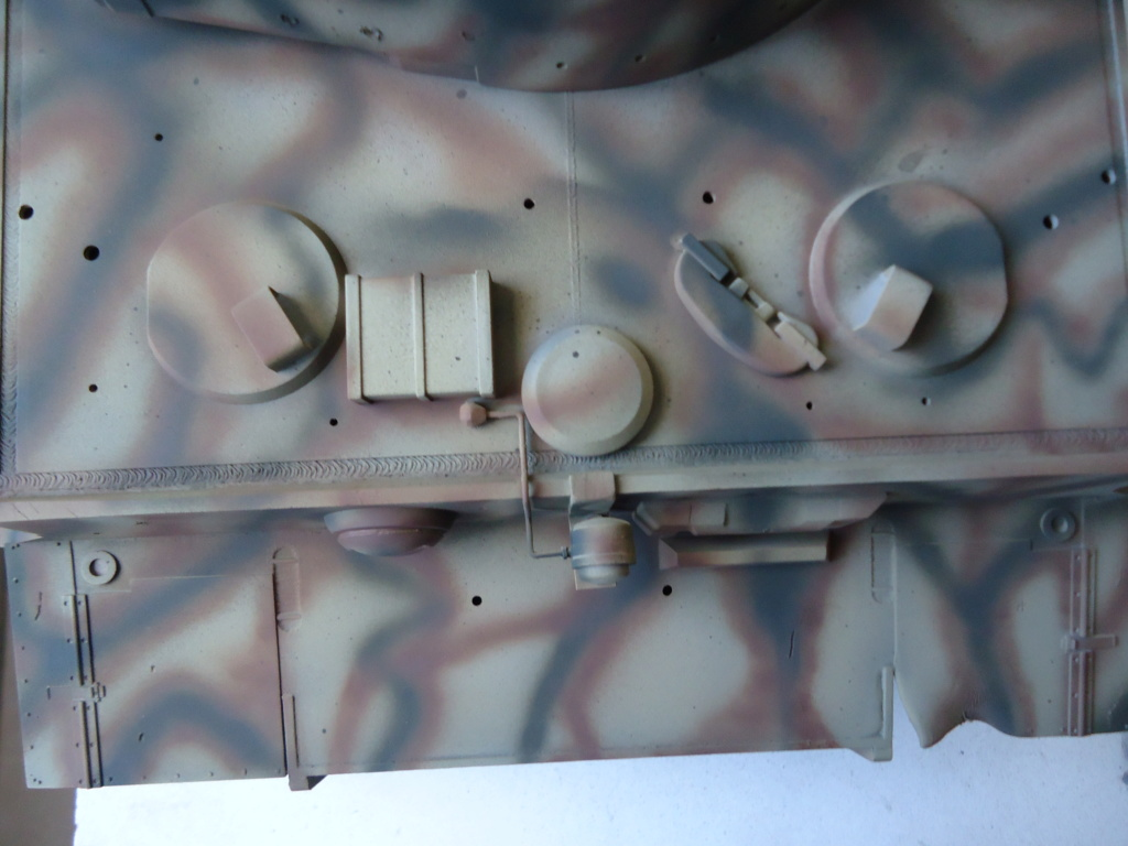 Le Panzerkampfwagen VI Tiger Ausf. E de Hobby Boss au 1/16  Par Dan le Cévenol - Page 4 Dsc01828