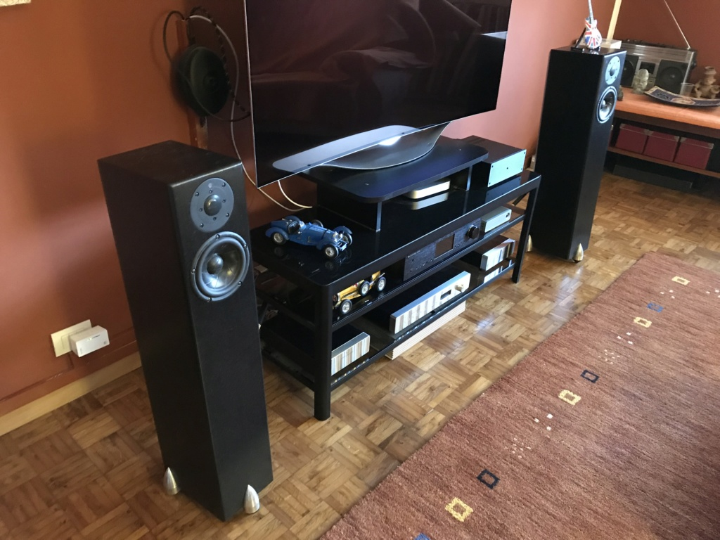 [TO] Vendo diffusori acustici Totem Hawk black 206cd310