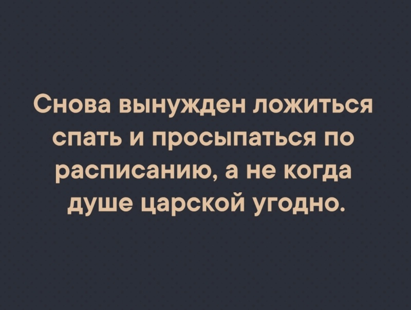 Юмор, приколы... - Страница 11 L188-b10