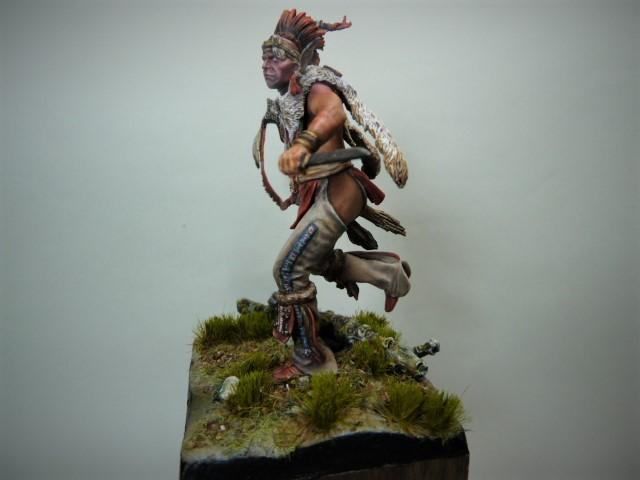 Fox Warrior, Pégaso Models  P1100213