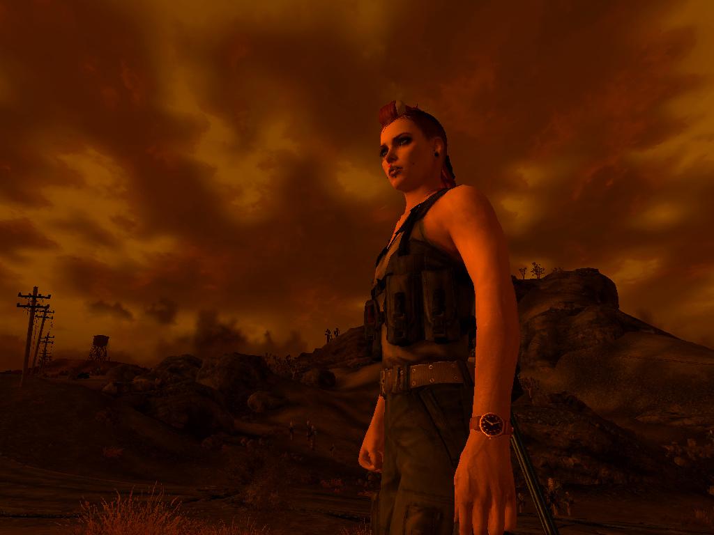 Fallout Screenshots XIII - Page 35 Screen13
