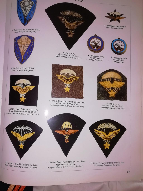 Question sur des insignes que je pense être Français  Img_2251