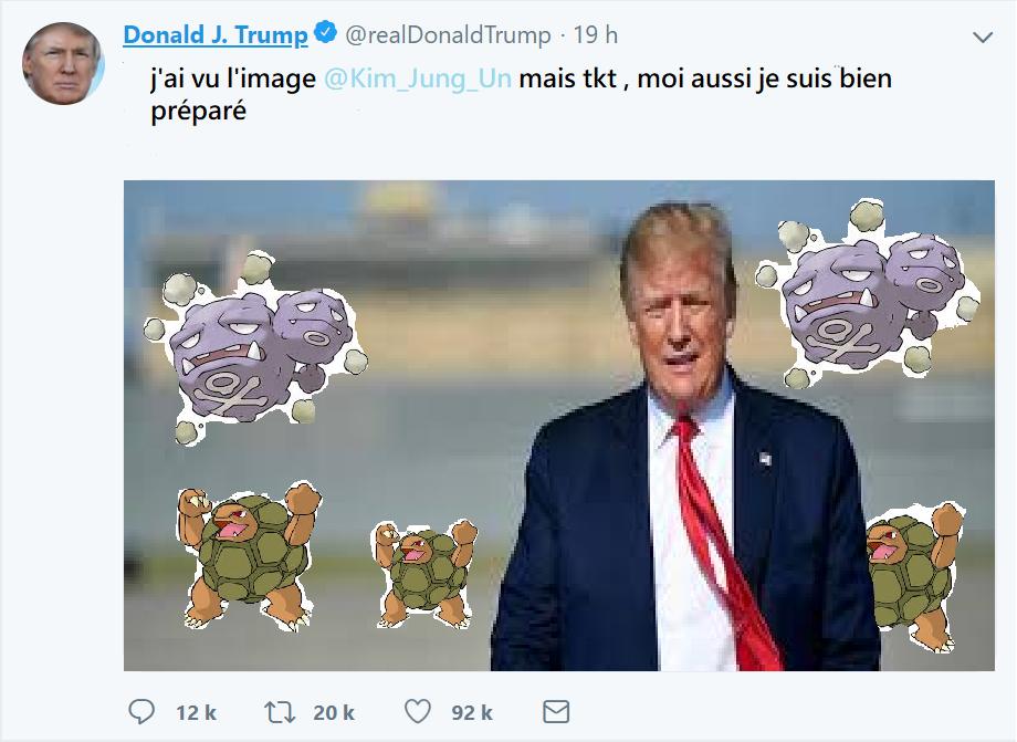 Meme pokeland & délire global  - Page 2 Donald10