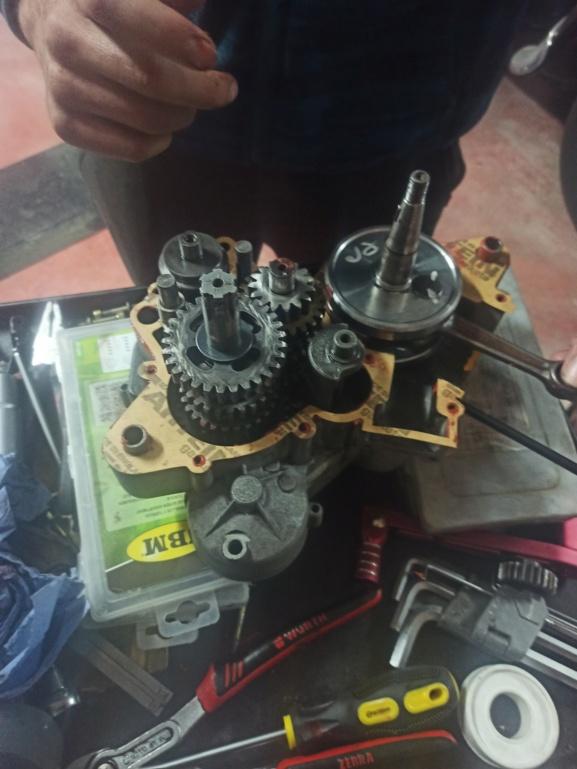 Motor Derbi GPR 75 Cerran10