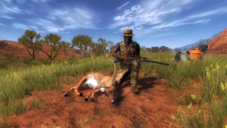 NUEVO ANIMALITO EN AUSTRALIA: CIERVO AXIS 2021-011