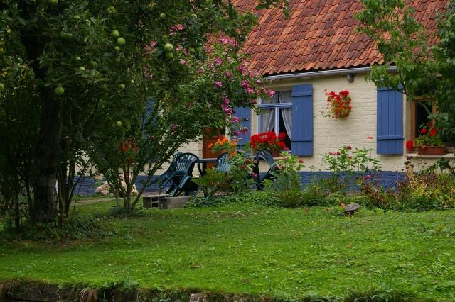 Le marais Audomarois( St Omer, France) 082010 Sg1l9912