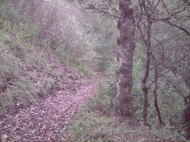 Recherche terrains P1309019