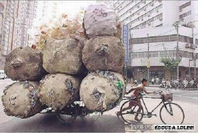 Les moyens de transport Normal14