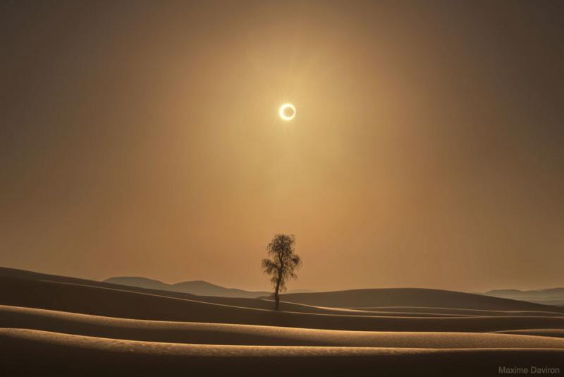 Image du jour (Année 2020) - Page 2 Desert10