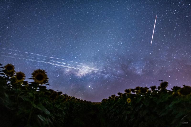 Image du jour (Année 2020) Starli10