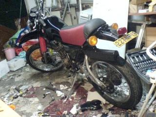 DTMX 125 cc MEMBRES : Personnalisées Dsc07810
