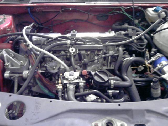 judi et sa 205 turbo P3005010