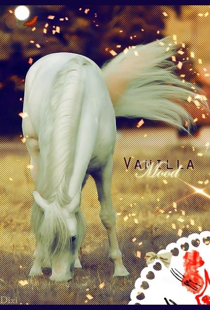 vanilla mood signa (pas commencer) Vanill11