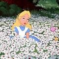 [E. C.] Evidence Alice10