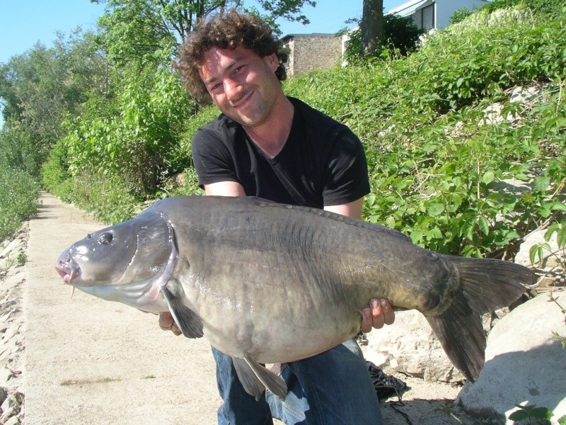 vos plus beau poissons de l année Dh000010