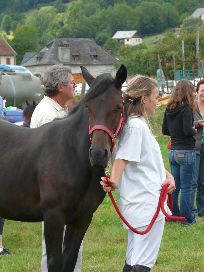Journée castillonnais 2010 ! P1100917