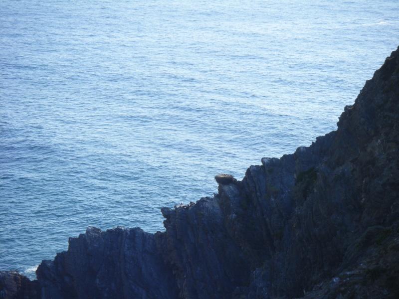 été 2012 : Portugal Dscf1518