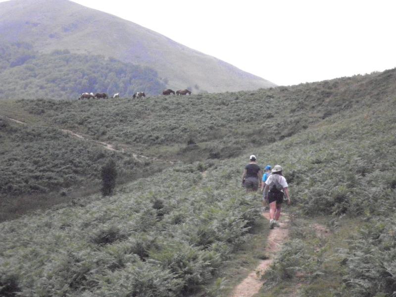 Vacances au Pays Basque été 2010 - Page 2 P7210011