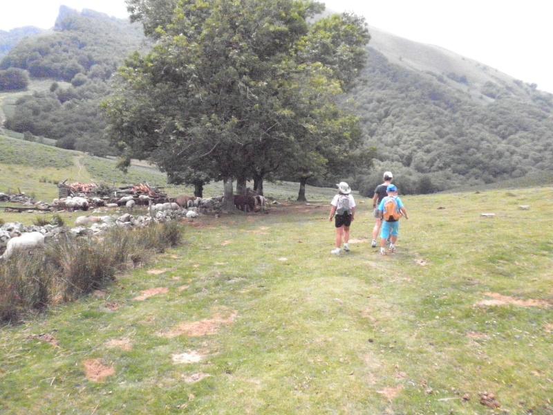 Vacances au Pays Basque été 2010 - Page 2 P7210012