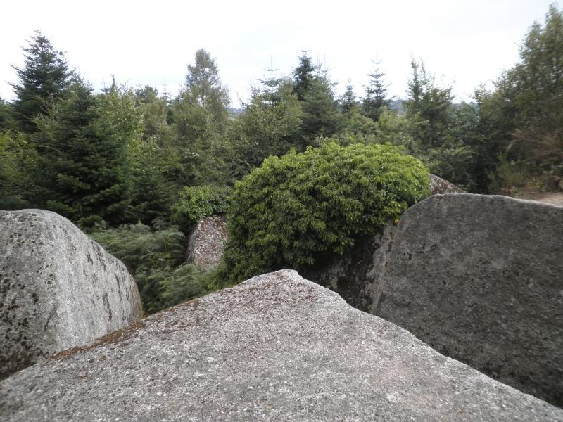 Week-end randonnée et géocaching en Centre Bretagne (forêt du Huelgoat) P8150011