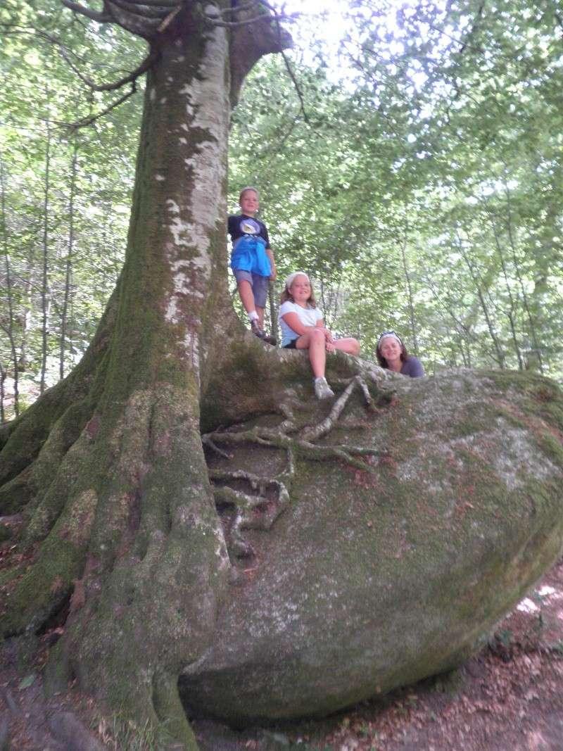 Week-end randonnée et géocaching en Centre Bretagne (forêt du Huelgoat) P8160010